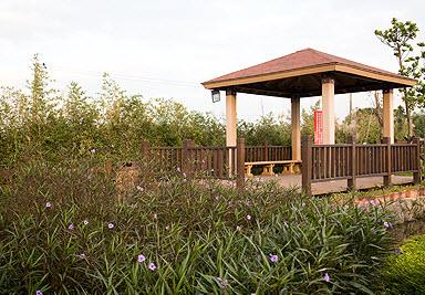 三芝水車公園花草叢中的涼亭