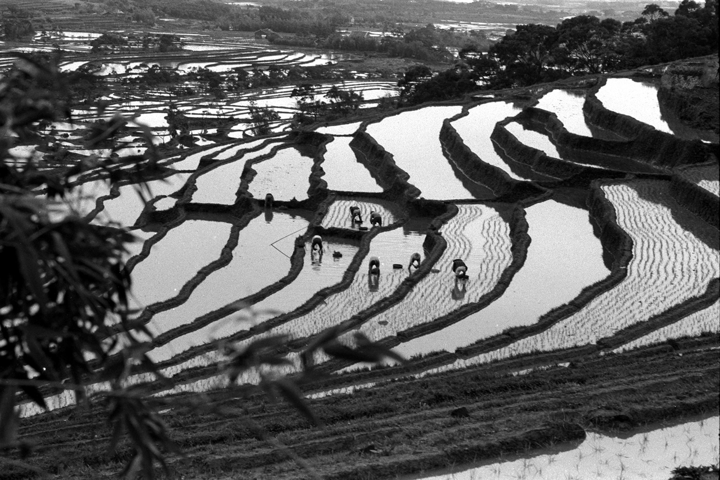 倒退原來是向前(忠山) 1968.3.15