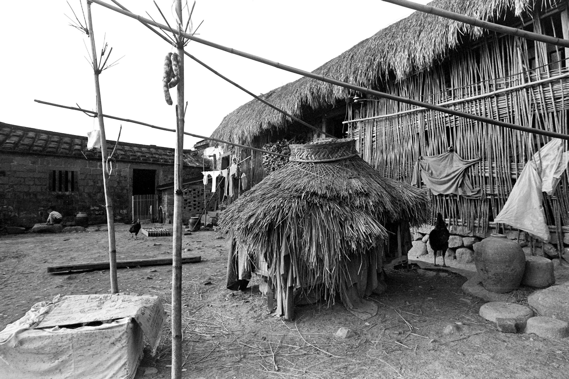 雞舍鴨寮茅草屋(水源地) 1972.2.16